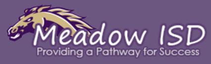 MEADOW ISD
